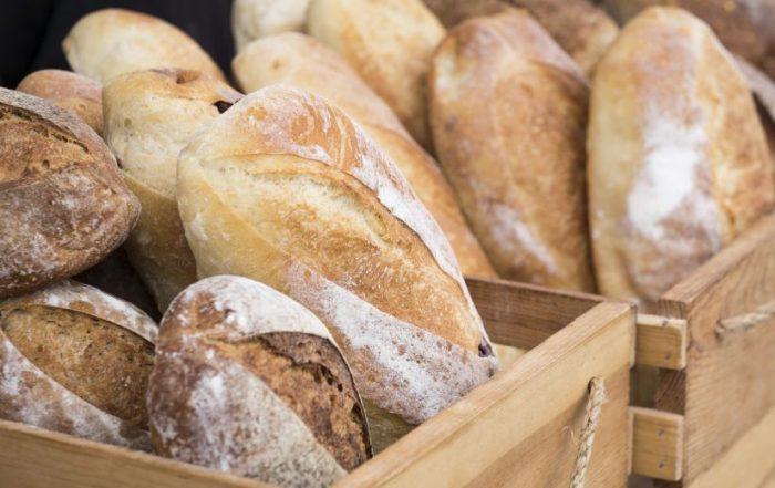 safardia post brood
